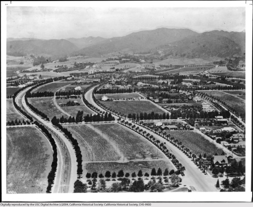 Aerial view of Beverly Hills, circa 1918. The curved bridle path on the left is today Rodeo Drive, and the parallel road in the center of the photo is Beverly Drive.