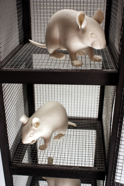 Bethany Krull: Space Saving Gerbil Tower, detail