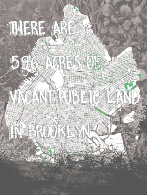 There are 596 acres of vacant public land in Brooklyn…