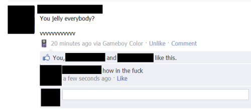 facebook update via gameboy color win