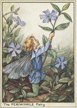 Garden Fairy : The Periwinkle Fairy by Mary Barker