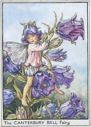 Garden Fairy : The Canterbury Bell Fairy by Mary Barker