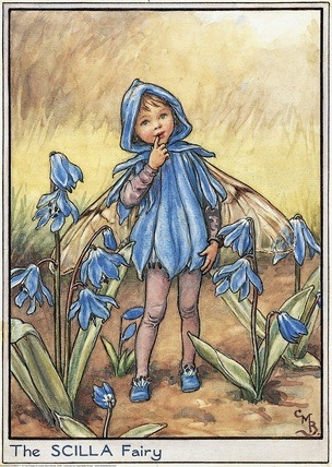 Garden Fairy  : The Scilla Fairy by Mary Barker