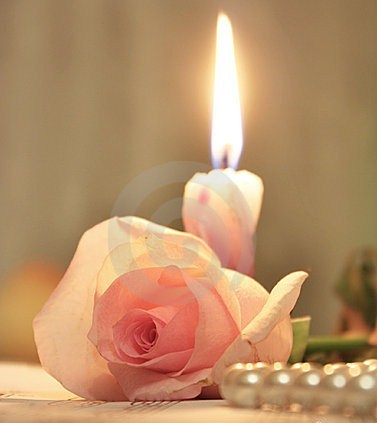 PINK ROSE AND CANDLE  !!!!