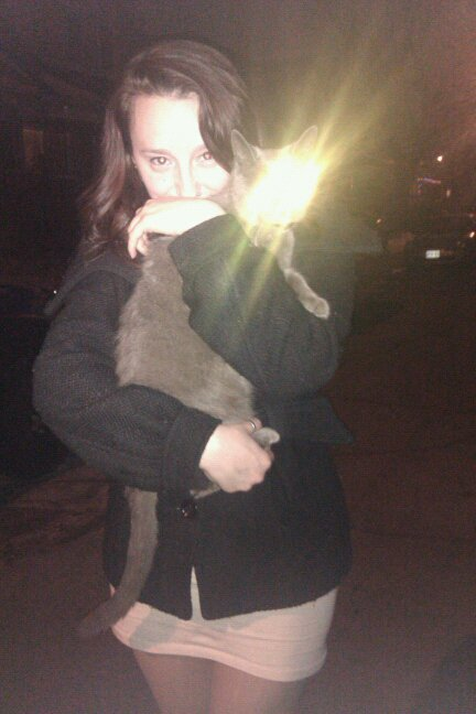 I also sometimes bring home stray lazer cats when I walk home from the bar.