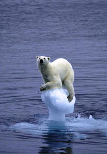 Réchauffement climatique Global warming