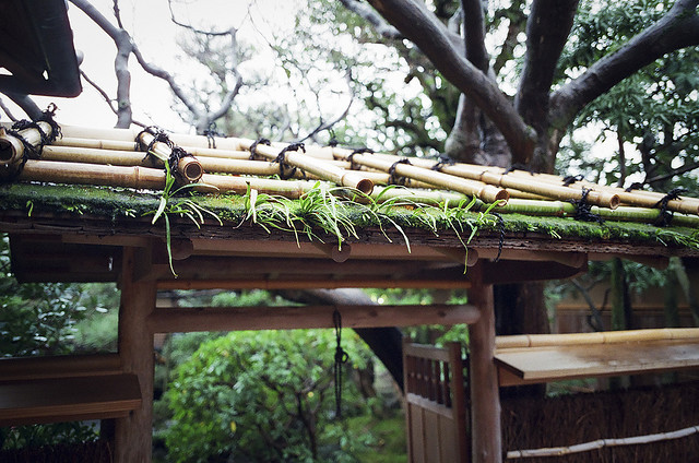 Roof by toshi [panda de rangefinder] on Flickr.