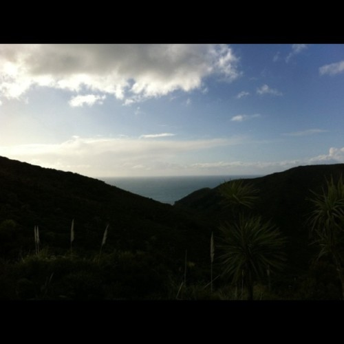 New Zealand Coast (Taken with Instagram at New Zealand)