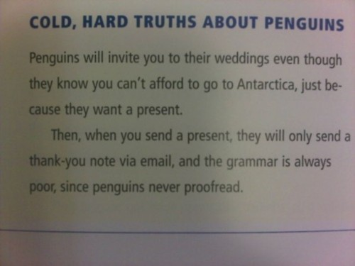 Those damn penguins.