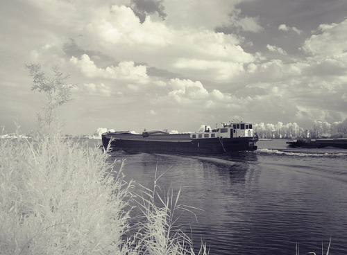 IJssel on Flickr.