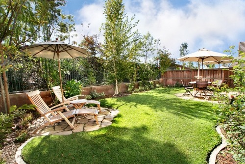 adorable backyard.