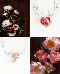 antlers // blooms via kari herer