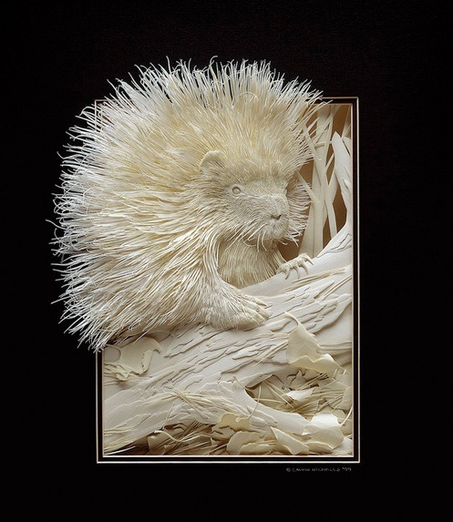 szymon:  Incredibly detailed paper sculptures by Calvin Nicholls.  Astounding! Look at the animal's hair!!