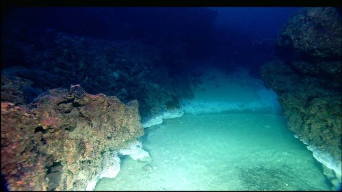 There are lakes that exist deep in the ocean.  Made up of brine, they lie on the sea floor and mix very little with surrounding water because of their high concentrations of salt. Depicted: An underwater brine lake.