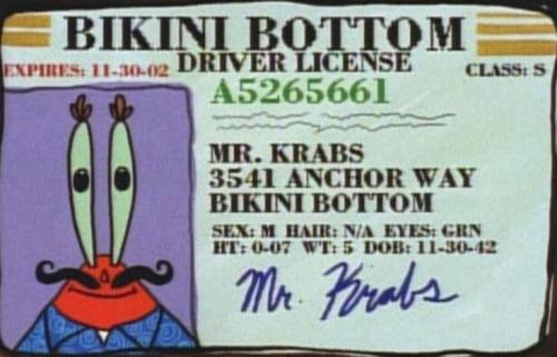 Mr. Krabs is 70 years old.  His eyes are green  he's 7 inches tall  he weighs 5  his first name is Mr.
