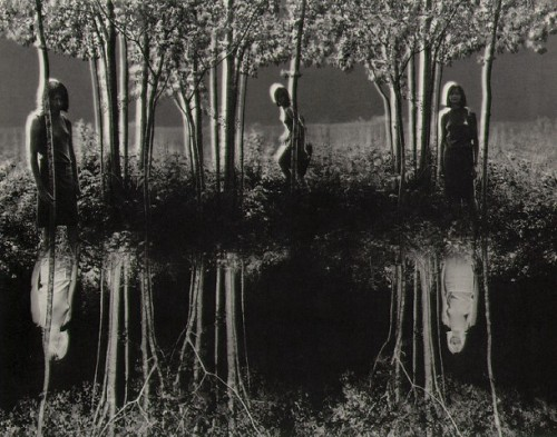 """Small Woods Where I Met Myself""Photograph by Jerry Uelsmann, 1967"