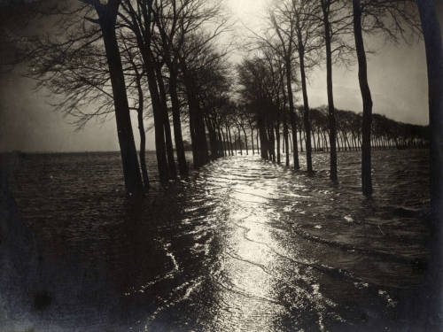 Flooded road with trees and land by moonlight. The floods of 1916 by D. Kluiver