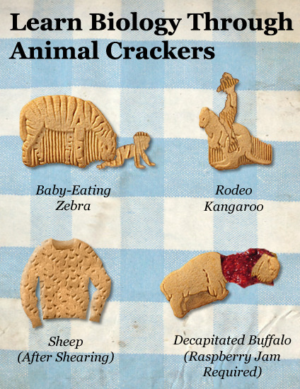 Learn Biology Through Animal Crackers