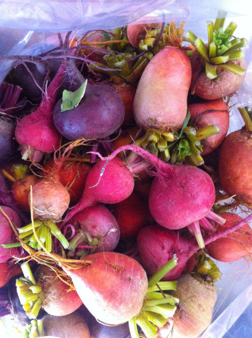 Rainbow beets from hood river.