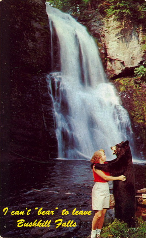 "I CAN'T ""BEAR"" TO LEAVE BUSHKILL FALLS  BUSHKILL FALLS""The Niagara of Pennsylvania"" Located in the beautiful Pocono Mountains at Bushkill, Pennsylvania Route #209. 300 feet of waterfalls and gorges, hundreds of acres of picnic grounds, boating.  Pre-Photoshop."
