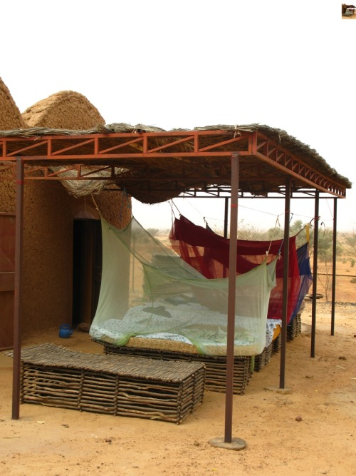 Promoting bed net usage across Africa! peacecorps:  Niger - 2009