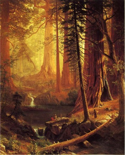ugeeee:  Albert Bierstadt's Giant Redwood Trees of California