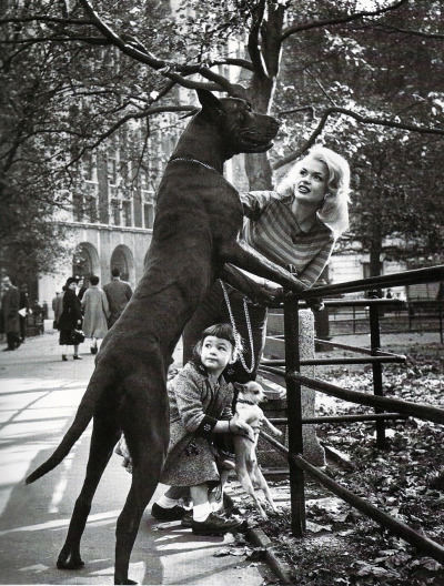 LIFE Magazine - Jayne Mansfield & daughter Marsika Hargitay, New York, 1965