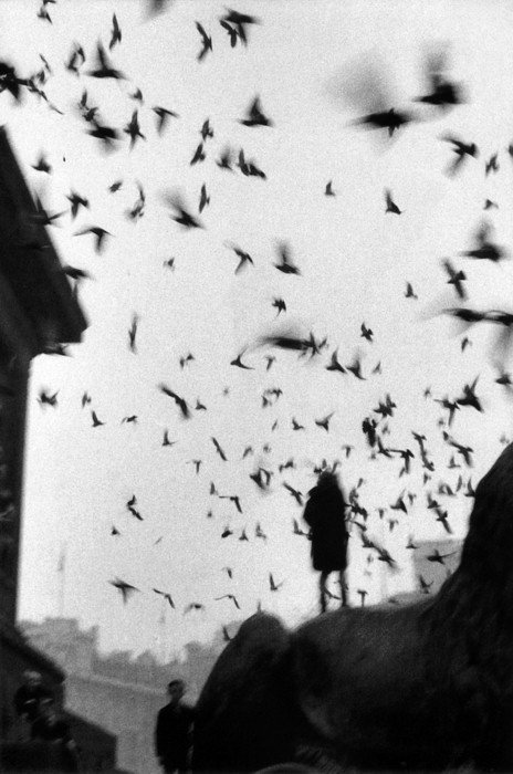 Sergio Larraín London, 1959