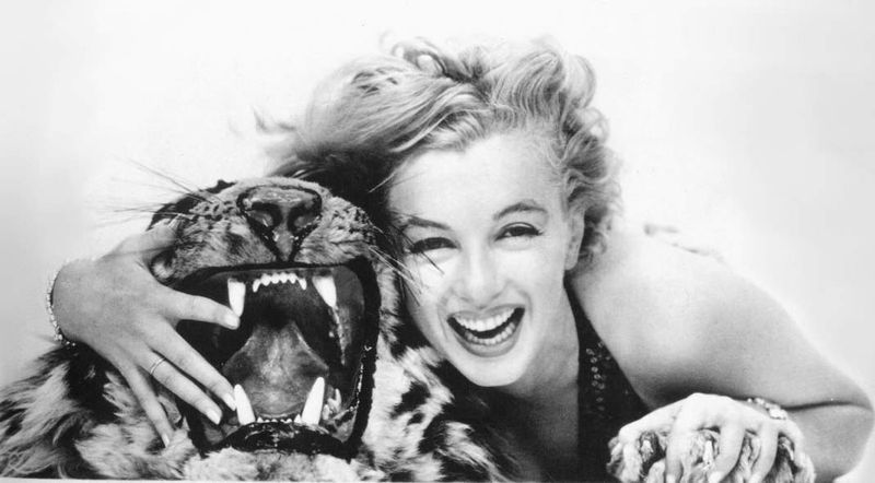 Marilyn Monroe and the Tiger (1957). Richard Avedon.  (Source)