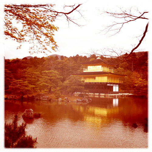 Kinkakuji (Golden Pavilion). Kyoto, Japan.