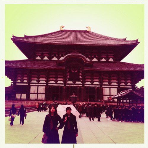 Japanese school girls. Todaiji Temple. Nara, Japan.