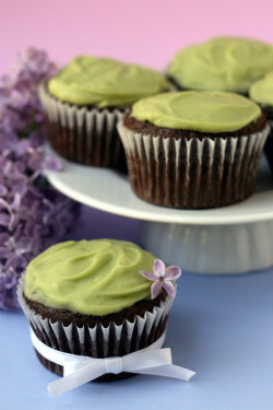 foodboners:  (via Whisk Kid: Green - {Vegan Chocolate Avocado Cupcakes})