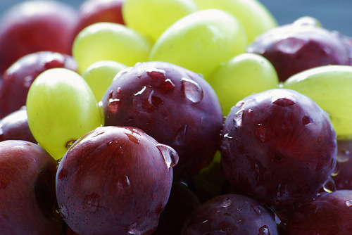 sazhari:    The main 4 health benefits of grapes are: 1. HEART DISEASES  Numerous studies have been conducted focused on the impact of grapes in preventing or slowing down heart diseases. About 20 years ago, scientists discovered that French people had less heart related health problems than other countries all around the globe. This discovery was called the French Paradox. The main explanation for this was that French people drank red wine with their meals. Since this discovery was made, more than 300 other studies were carried out, proving that red wine or grapes juice can reduce the risk of heart diseases in time. It seems that grapes juice or wine block the artery clogging effects of fatty food products. Coronary heart diseases occur when plaque accumulations build up on the walls of arteries. This can lead to a blockage of vessels supplying blood to the heart (or brain) causing heart attacks (or strokes). Antioxidants in fresh grapes, known as polyphenols, are responsible for preventing the accumulation of oxidized cholesterol (this was proven in a study that was published in the Journal of Nutrition). Resveratrol, a polyphenol contained by grapes, protects against arterial wall damage. Another interesting nutrient contained by grapes is pterostilbene. Researchers discovered that this compound can reducecholesterol and triglycerides by affecting enzymes responsible with the regulation of fat level in our blood. Other interesting compounds are saponins, located in grapes skin. These substances bind with cholesterol, preventing in this way its absorption into the body. Also, saponins seem to be able to block inflammations. And this is not all… By drinking grapes juice we accumulate another antioxidant called alpha-tocopherol, a substance that increases blood antioxidant activity by 50%. Referring to the selection of grapes, it seems that red grapes are the healthiest and best to eat in order to prevent heart diseases. 2. CANCER  Grapes seem to be very good cancer fighting fruits. They contain high levels of caffeic acid, a very strong cancer fighting substance. Bioflavonoids, another nutrient contained by grapes, facilitate the absorption of vitamin C into our bodies and help vitamin C maintain healthy connective tissue in our bodies. They also function as antioxidants, by protecting vitamin C from oxidation and by preventing ruptures in capillaries. Bioflavonoids provide strength to our cells in the battle with cancerous cells and also help kill cancer cells. The early mentioned nutrient, resveratrol, also helps in preventing cancer, especially liver, lung, breast and prostate cancer. As for heart diseases, red grapes are best for cancer prevention. 3. VIRUSES  In a study conducted at Erciyes University in Turkey, scientists discovered that grapes have an effective antimicrobial action. The study revealed that this action applies for certain bacteria, like Stoph and the famous E. coli. Additionally, the high concentration of tannin, another polyphenol contained by grapes, can help fight viruses and tumors. Tanin is absorbed in the intestinal tract, where it is most effective in fighting viruses. 4. AGING  Although we have found that resveratrol has a lot of health related benefits, the list is not over yet. As we have previously discussed, resveratrol is a natural antioxidant that can help reduce heart diseases, the risk of cancer and even brain diseases like Alzheimer's. Besides these benefits, resveratrol seems to influence genes controlling the aging process. According to Harvard Medical School researchers, this substance can restrict calories intake. It activates enzymes that slow aging, thus increasing DNA stability and extending life span by 70%. Grapes can contribute to reducing the risk of loss of eyesight (a major problem among the elderly). By increasing grapes intake we can reduce the risk of macular degeneration (the main cause of vision loss) by 30-40%.