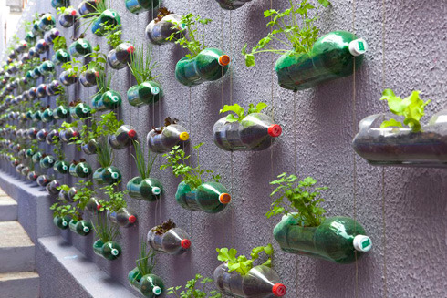 Via gardensinunexpectedplaces:  Gardening in discarded plastic bottles — a DIY project many people could make using bottles, string, and washers. The installation pictured is enabling a family in Sao Paolo, Brazil, to grow its own herbs and vegetables. (via Do The Green Thing)