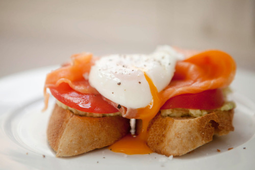sporkme:  Poached Egg with Smoked Salmon, Tomato and Avocado on Wheat Bread Yes.