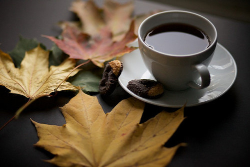 kreaturette:  Autumn Tea by tfelix on Flickr.