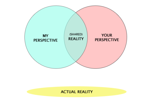 phenomenologie:  Expectations Vs. Reality  This diagram, while humorous, is entirely correct.Actual reality cannot be directly experienced perceptually.