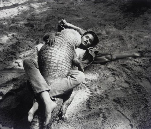 Lauren Hutton Wrestling Alligator by Helmut Newton, 1989