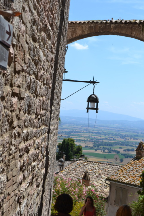 We had a day trip to Assisi on Friday. We took a long bus ride to see two churches so it seemed like a very long day. We first saw a church that was on the hill where most of Assisi was. This church had two levels, the lower level had very intricate frescos and multiple domes in the ceiling. The upper level was less flashy. We then had a break for lunch and were told to meet at an escalator that led down to a parking lot. We were not told this was a 25 minute walk though the city center up a hill in ninety degree weather. After finding the bus, we went to a church further from the city center where St. Francis first had his chapel. Later the larger church was built up around the original stone chapel and house. It is believed that St. Francis died between these two building that are now inside of a larger church. Taking a nice nap on the way back to Rome, we were well rested and were looking forward to dinner at Charro Cafe (mexican!!). Rosa was wondering who should call the Mexican restaurant and then she remembered she spoke Spanish!We had no idea what was in store for us at Charro cafe. We sat down for our meal and ordered (buffalo wings and guacamole for appetizer and I got a vegetable burrito!). However, the unsuspecting americans were not prepared when all of a sudden the music was cranked up and the wait staff started dancing between the table. After their dance, the next song came on and everyone in the restaurant stood up on their chairs and started dancing too.