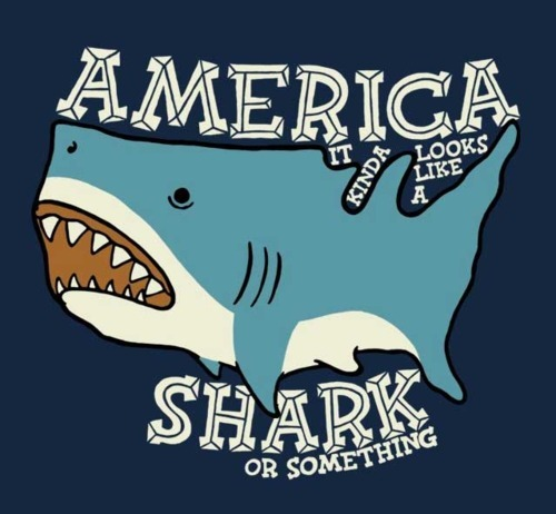 sayitsayitsayitsayit:  Happy Shark Week :)