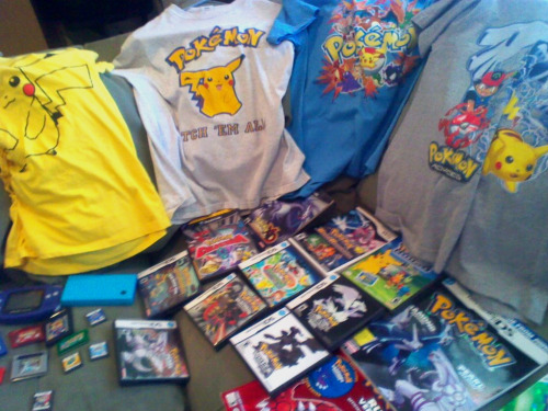 my-seventh-life:  Bits and Bobs of my Pokemon collection I gathered into the living room today  Damn, I used to have that grey Pikachu t-shirt…