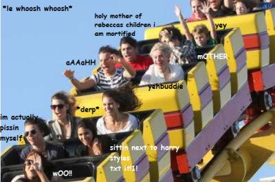 roller coaster ride with 1d yep