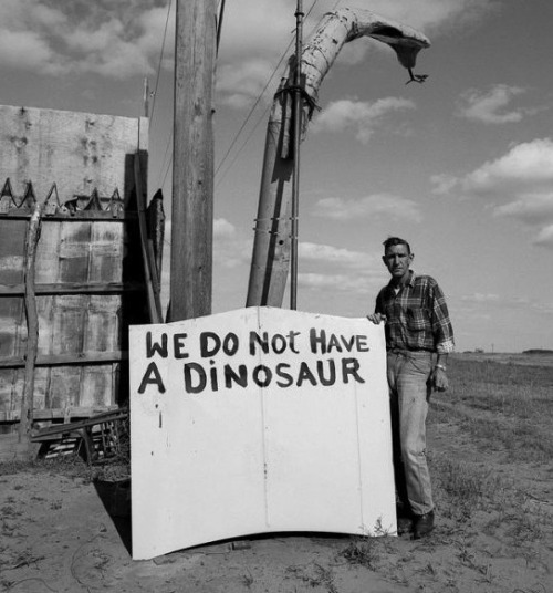 """We do not have a dinosaur"""