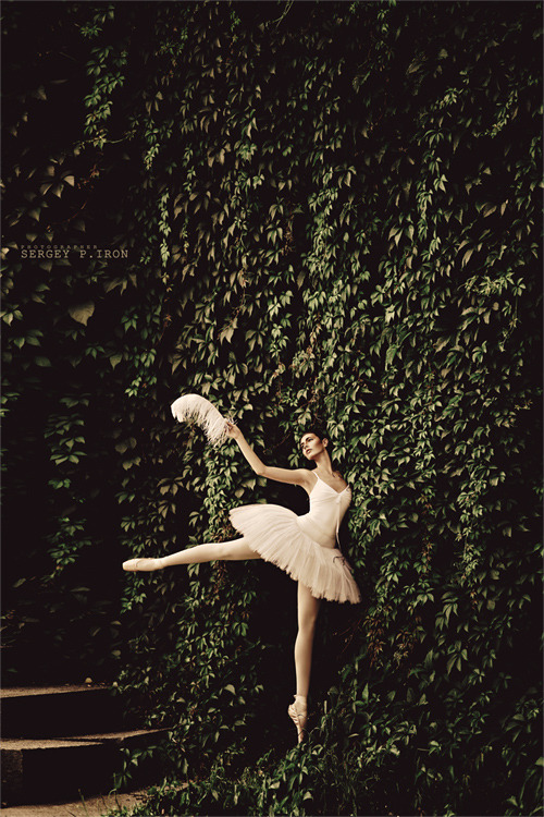 balletballetballet:  by Sergey P. Iron