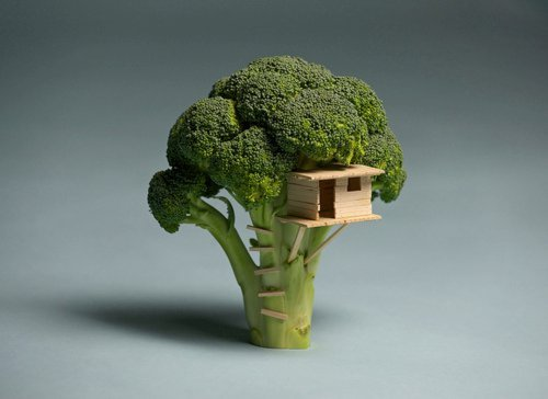 Who else thought of broccoli as trees when you were a kid ? :P