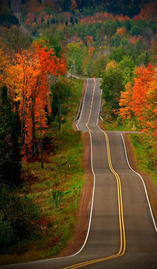 ninbra:  Northern Wisconsin during Autumn.