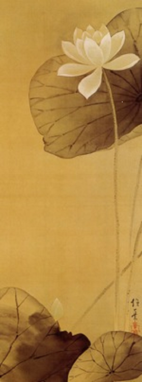 The White Lotus, Edo period, 19th century Sakai Hoitsu