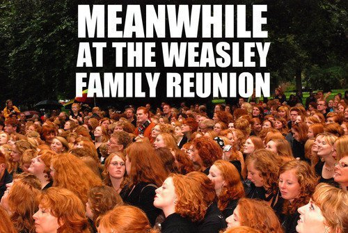 I want to be a weasley.