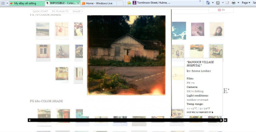 My photograph is on the polaroid Impossible Project website. http://shop.the-impossible-project.com/allabout/colorshade/