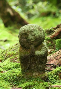 hippist:  opal-escence:  I LOVE these moss covered statues. I adore them.  This is the cutest thing ever